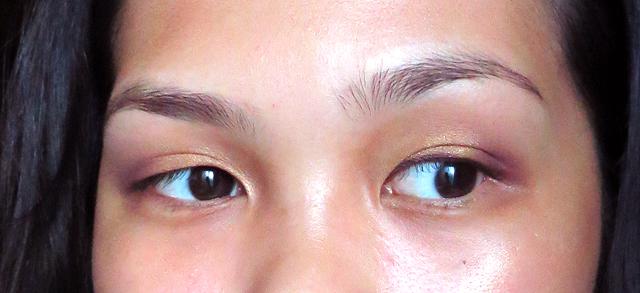 holiday - plum - eyes